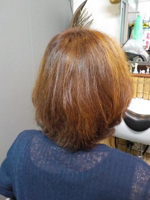 愛媛県松山市 美容室 ロハスヘアーのお店日記