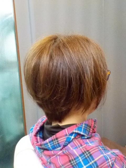愛媛県松山市 美容室 カット ヘアメイク 着付け ロハスヘアー