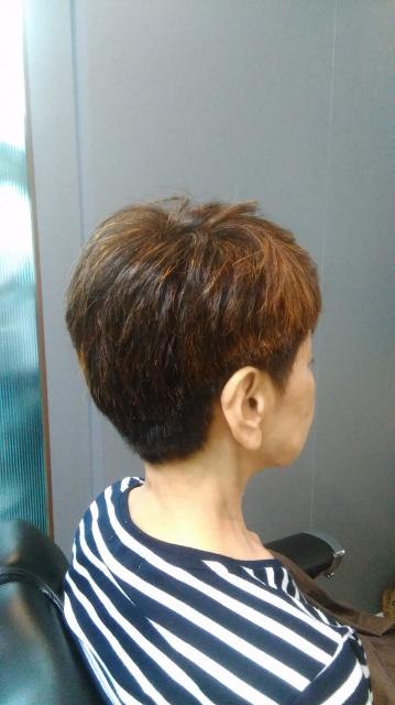 ハナヘナ ヘンナ 天然植物100%染愛媛県松山市 美容室 ばっさりカット ロハスヘアー